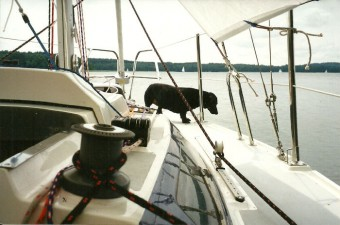 Mazury 2001 ATAGA